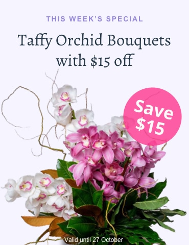 Save $15 on Taffy Orchid Bouquet